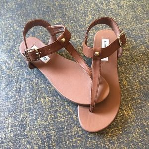 Chaya Sandals by Steve Madden - NEVER worn!